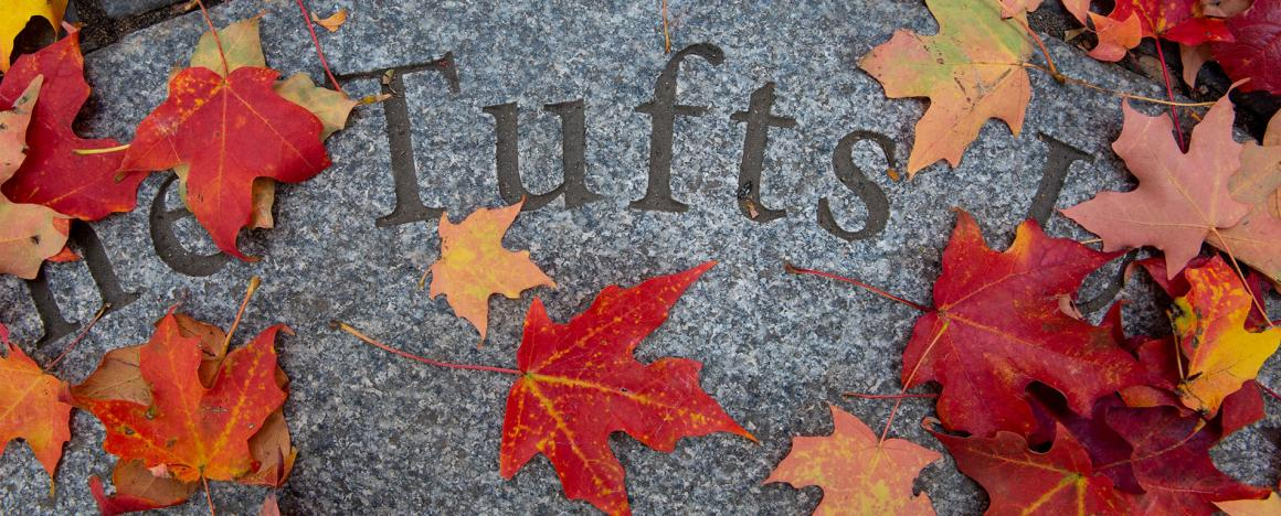 Tufts University sign, in the midst of colorful autumn leaves